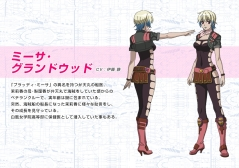 mouretsu pirates abyss of hyperspace misa